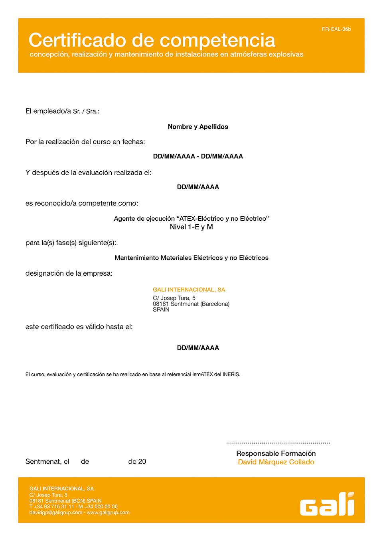 Certificado-DG-INERIS-Curso-IsmATEX-1M