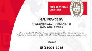 Certificate ISO 9001 (2015) Gali France miniature